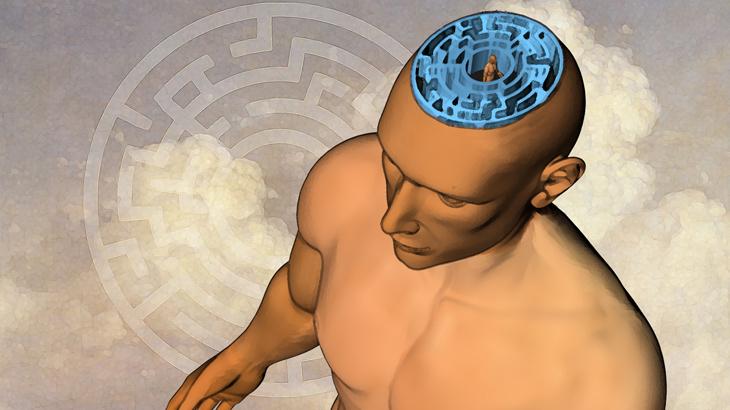Teasergrafik für das Gehirn.info